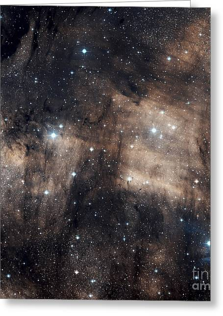 Interstellar Space Greeting Cards - Ic 5068, A Faint Emission Nebula Greeting Card by Charles Shahar