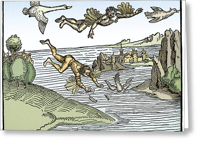 Icarus And Daedelus Greeting Card by Sheila Terry