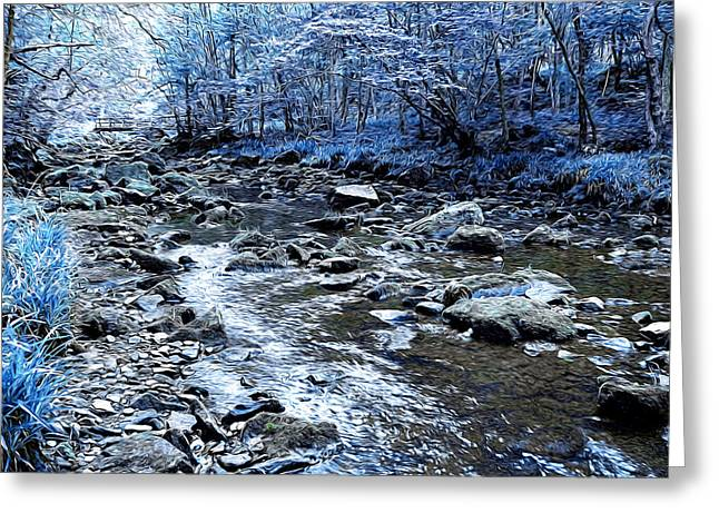 Ice Blue Forest Greeting Card by Svetlana Sewell