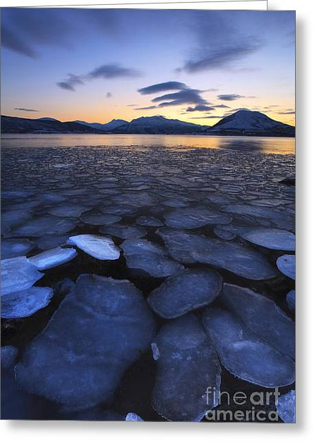 Recently Sold -  - Sunset In Norway Greeting Cards - Ice Flakes Drifting Towards Greeting Card by Arild Heitmann