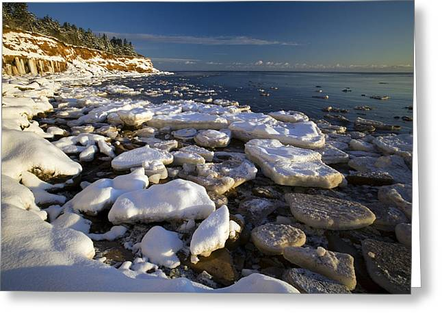 Best Sellers -  - Cliffs Over Ocean Greeting Cards - Ice Pieces, Cape Turner, Prince Edward Greeting Card by John Sylvester