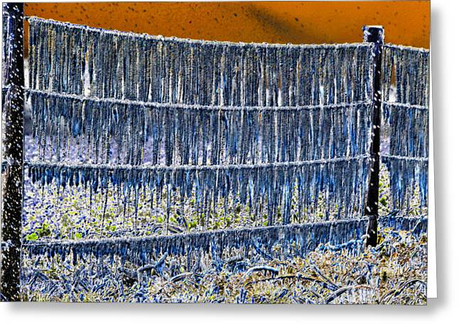 Ice Storm Greeting Card by David Lee Thompson