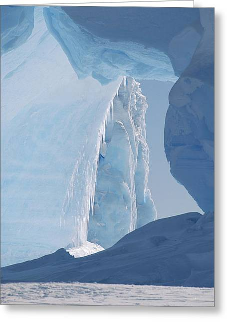 Antarctic Ocean Greeting Cards - Icebergs Caught In Frozen Ice Shelf Greeting Card by Konrad Wothe