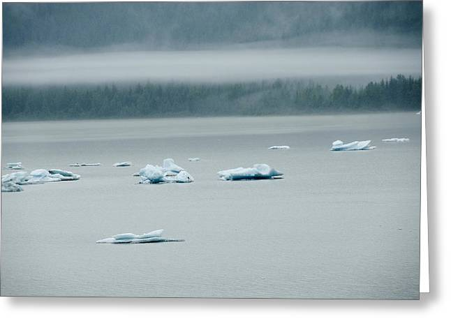 Icebergs Floating In The Sea Greeting Card by James Forte