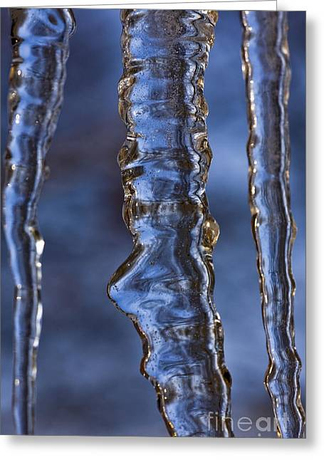 Icicles Greeting Card by Heiko Koehrer-Wagner