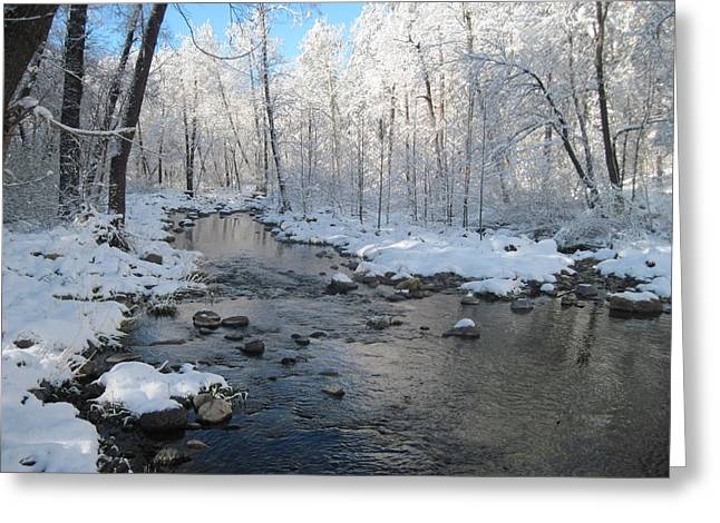 Oak Creek Greeting Cards - Icing on the Trees Greeting Card by Sandy Tracey