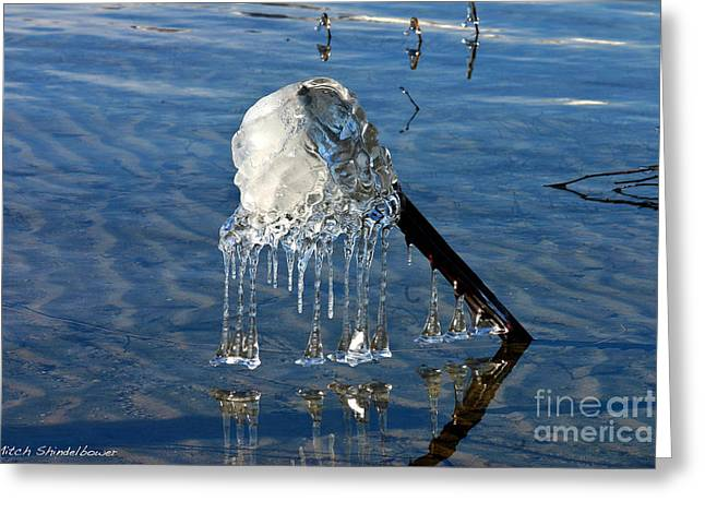 Icy Fence Post Greeting Card by Mitch Shindelbower