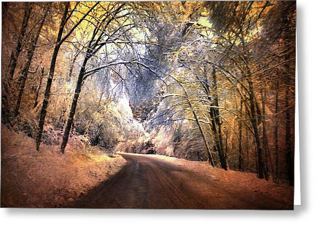 Icy Road Greeting Card by Jai Johnson