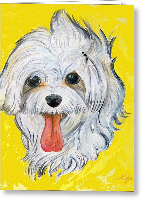 Maltese Drawings Greeting Cards - Icy the Maltese Greeting Card by Ann Marie Napoli