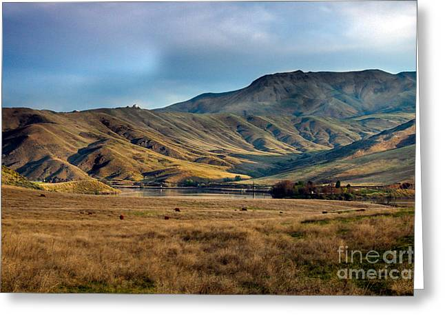 Landsacape Greeting Cards - Idaho foothills Greeting Card by Robert Bales