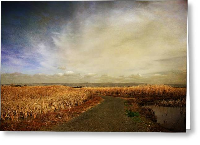 Marsh Path Greeting Cards - If I Could See Into The Future Greeting Card by Laurie Search