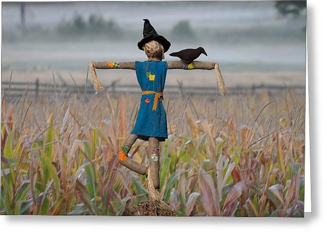 Cornfield Digital Art Greeting Cards - If I Only Had a Brain Greeting Card by Bill Cannon