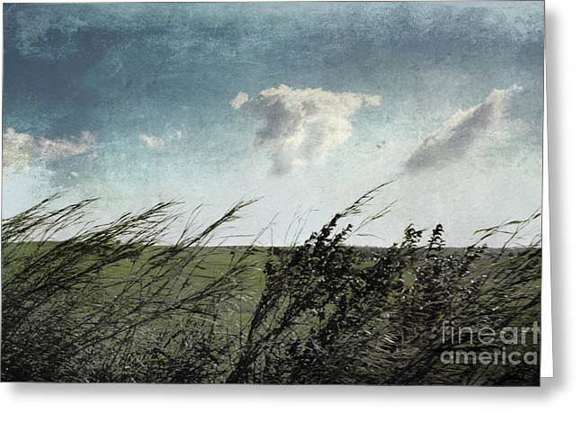 Minimal Landscape Greeting Cards - If the winds of winter could soothe  Greeting Card by Ellen Cotton