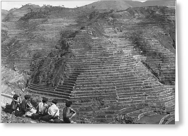 Ethnic And Tribal Peoples Greeting Cards - Ifugao Indians Looking Over Terraced Greeting Card by Charles Martin