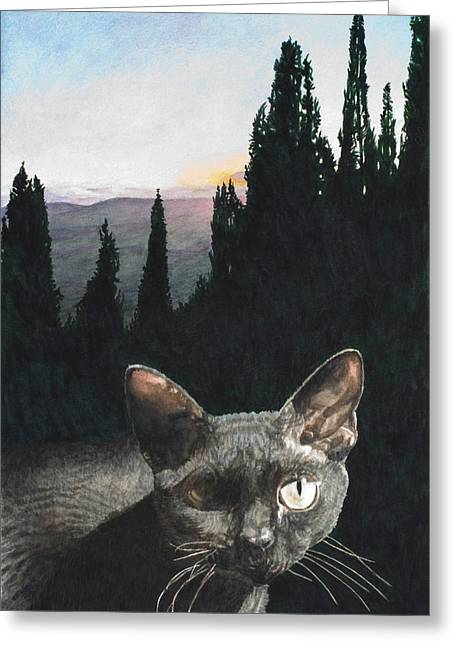 Italian Sunset Greeting Cards - il Magnifico Greeting Card by Perry Woodfin