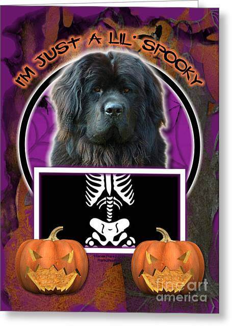 Canine Greeting Cards - Im Just a Lil Spooky Newfoundland Greeting Card by Renae Laughner