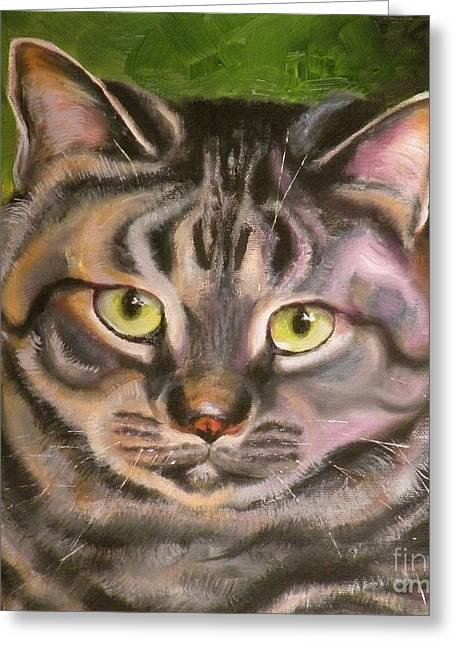 Cat Drawings Greeting Cards - Im Your Man Tabby Greeting Card by Susan A Becker
