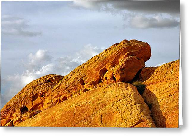Formations Greeting Cards - Imagination runs wild - Valley of Fire Nevada Greeting Card by Christine Till