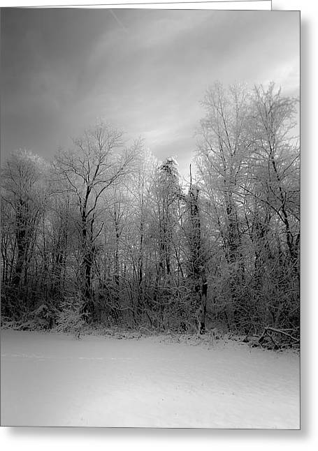 Storm Prints Greeting Cards - Impressionist Snow Greeting Card by Lori Coleman