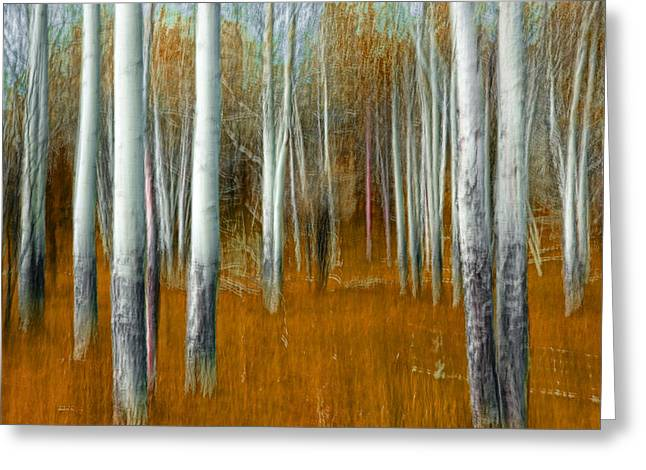 Tangerine Greeting Cards - Impressionistic Orange Forest Greeting Card by Randall Nyhof