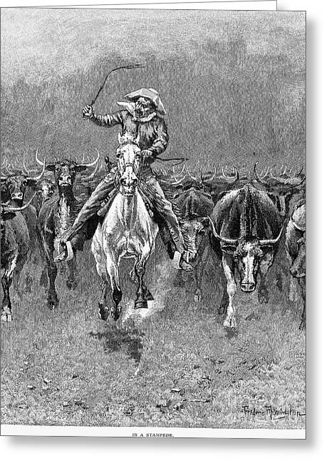 In A Stampede Greeting Card by Granger