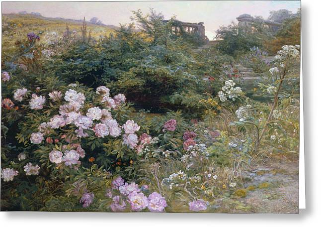 Roses Paintings Greeting Cards - In Full Bloom  Greeting Card by Henry Arthur Bonnefoy