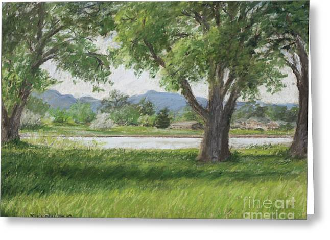 Afternoon Landscape Of Cottonwoods Casting Shadows Across Sunlit Grass With Lake And Rocky Mountain Foothills In The Background. It Is A Soothing Urban Nature Greeting Cards - In Passing Greeting Card by Susan Driver