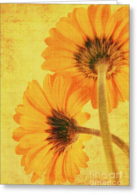 Decorativ Photographs Greeting Cards - In summertime Greeting Card by Angela Doelling AD DESIGN Photo and PhotoArt