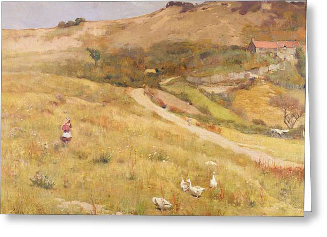 Open Land Greeting Cards - In Summertime  Greeting Card by Frederick William Jackson