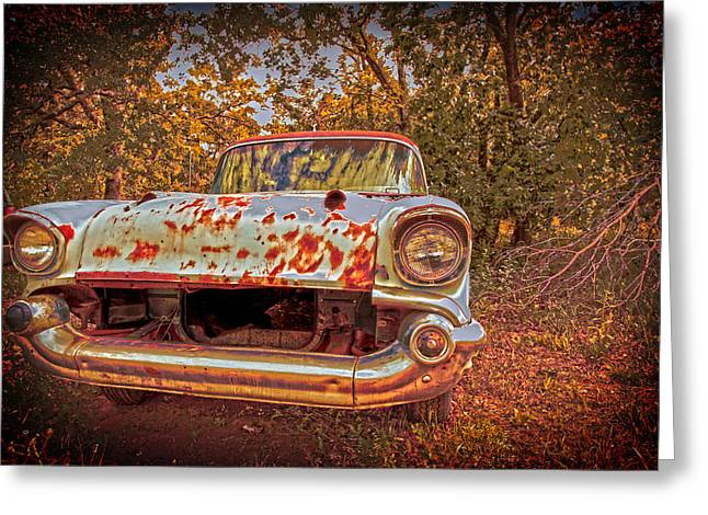 Rusted Cars Greeting Cards - In the backwoods Greeting Card by Toni Hopper