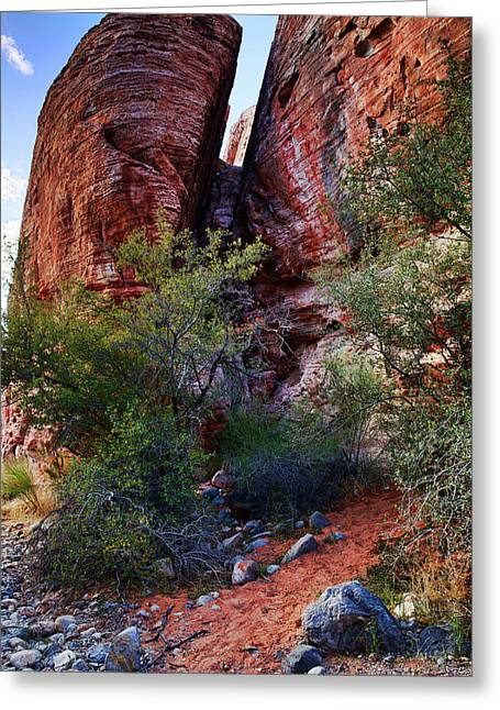 In The Canyon Greeting Card by Rick Berk