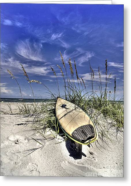 Sea Oats Greeting Cards - In the Dunes Greeting Card by Benanne Stiens