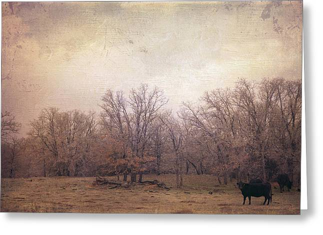 Bare Trees Greeting Cards - In the field Greeting Card by Toni Hopper
