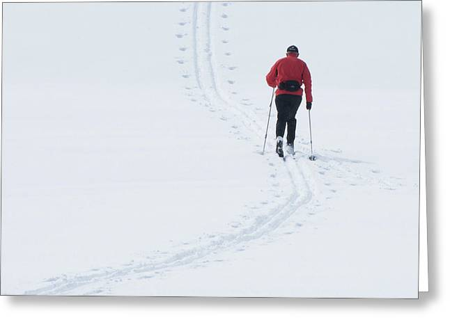 Cross-country Skiing Art Print Greeting Cards - In the Groove Greeting Card by Erdal Oskay