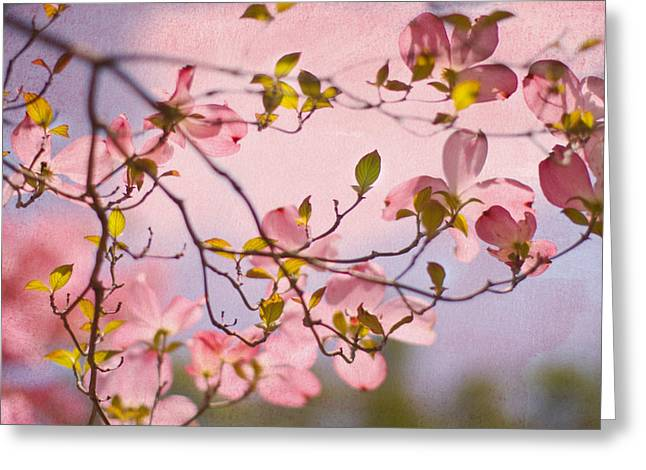 Dogwood Greeting Cards - In The Pink of Things Greeting Card by Rebecca Cozart