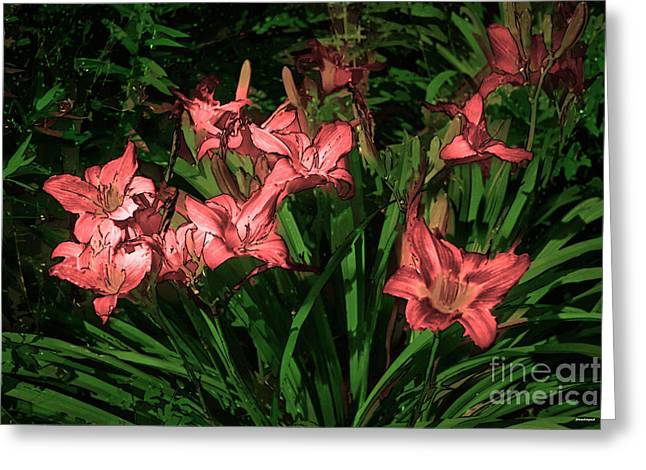 Photo Gallery Website Greeting Cards - In the Pink Greeting Card by Tom Prendergast