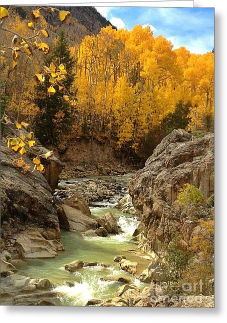 In The Rockies Greeting Card by Phil Huettner