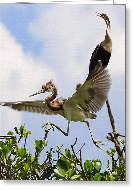 Louisiana Heron Greeting Cards - In The Rookery Greeting Card by Patrick M Lynch