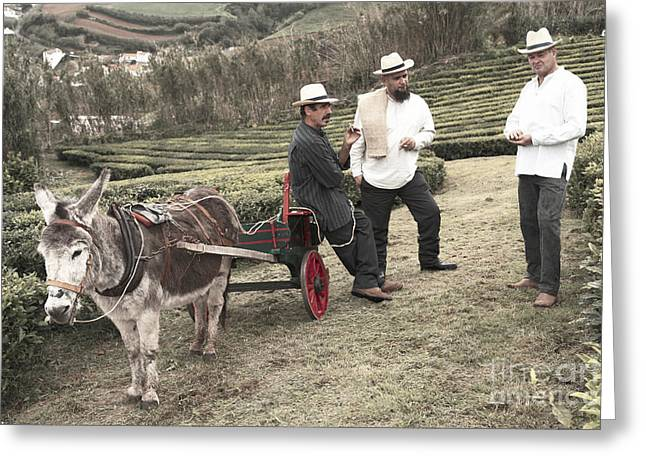 Manual Labor Greeting Cards - In the tea gardens Greeting Card by Gaspar Avila