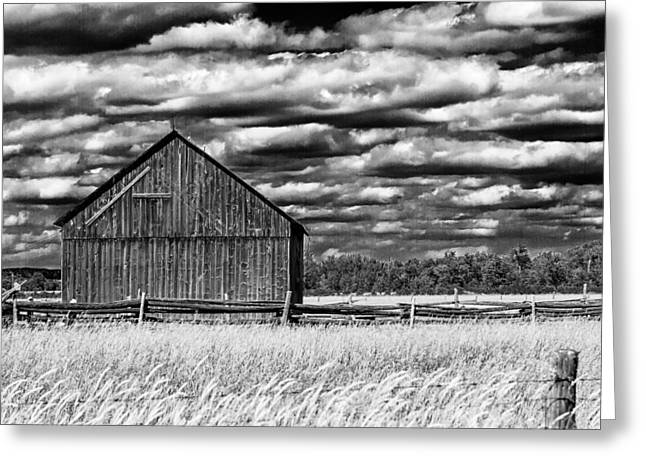 Wooden Building Greeting Cards - In The Wheat Greeting Card by Tim Wilson