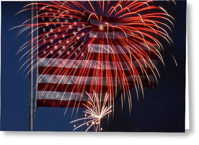 INDEPENDENCE DAY Greeting Card by Skip Willits