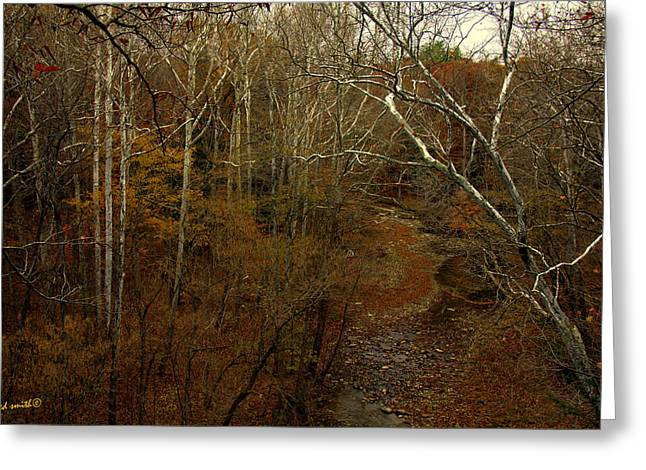 Indiana Autumn Greeting Cards - Indian Creek Greeting Card by Ed Smith
