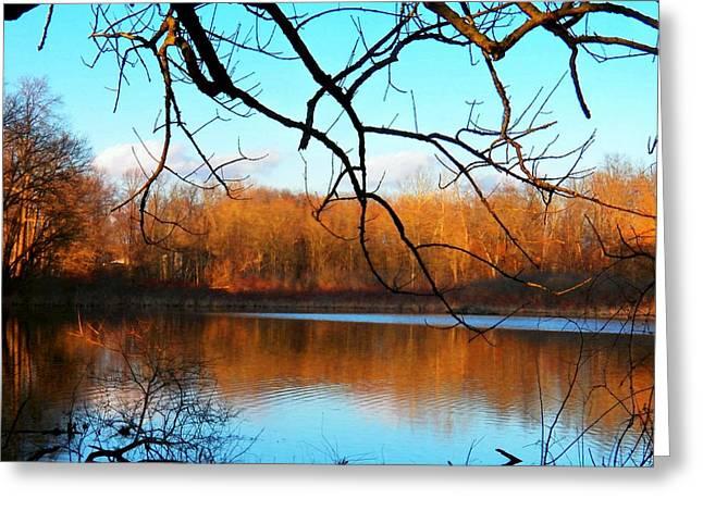 Indiana Springs Greeting Cards - Indiana Lake Greeting Card by Joyce Kimble Smith