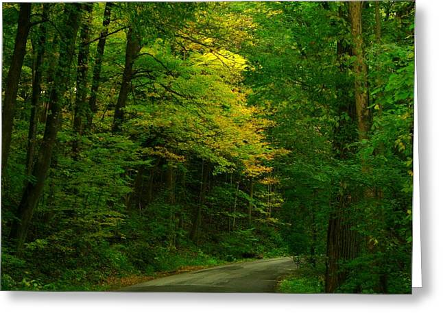 Indiana Autumn Greeting Cards - Indiana Road Greeting Card by Joyce Kimble Smith