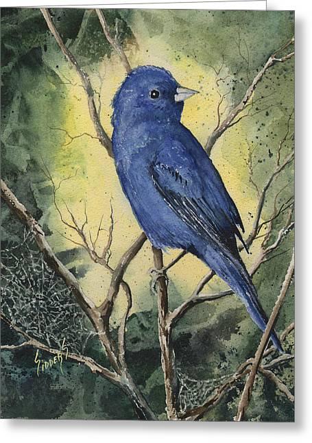 Songbird Greeting Cards - Indigo Bunting Greeting Card by Sam Sidders