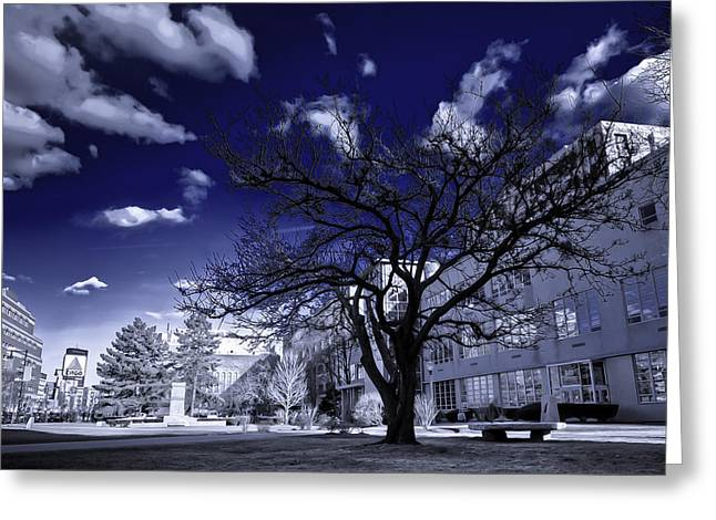 Split Toning Greeting Cards - Infa-Blue Greeting Card by Andrew Kubica