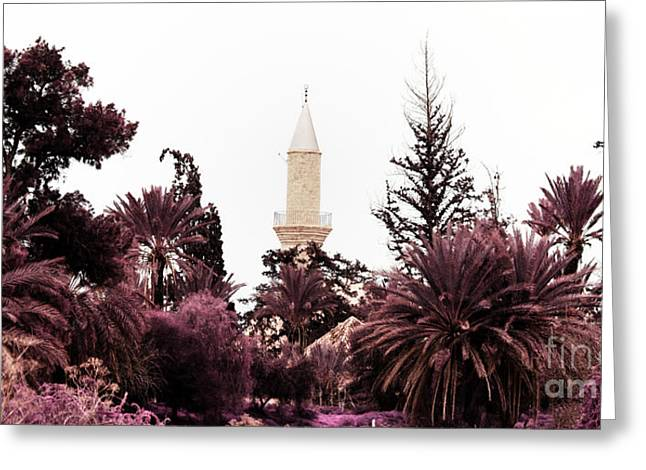 Larnaca Greeting Cards - infrared Hala Sultan Tekke Greeting Card by Stylianos Kleanthous