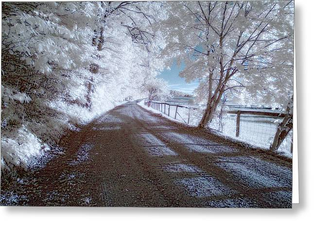 Dream Scape Greeting Cards - Infrared Snow in July Greeting Card by Gregory Blank