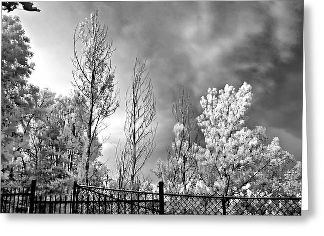 Storm Prints Photographs Greeting Cards - Infrared Summer Storm 2 Greeting Card by Steve Harrington