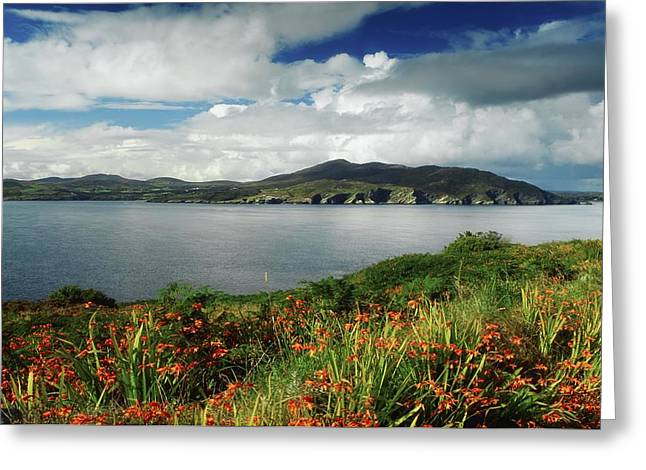 Incline Photographs Greeting Cards - Inishowen Peninsula, Co Donegal Greeting Card by The Irish Image Collection